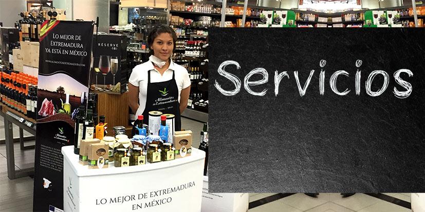 Enlace a la sección servicios de Sancay
